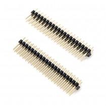 Straight Pin Header 2 Row, 20 Pin, 2.54mm Pitch (2pcs)