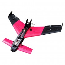 "VAS Pegasus 39"" Canard airplane"