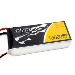 TATTU 16000mAh 4s 15c Lipo Battery