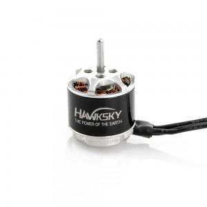 Hawksky AT1107 10000kv Motor