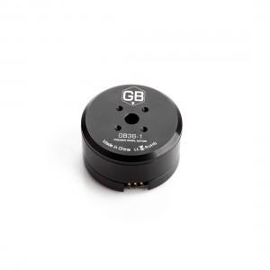 Tiger GB36-1 Brushless Gimbal Motor (hollow shaft)